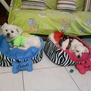 Dog bed for sale !!!!