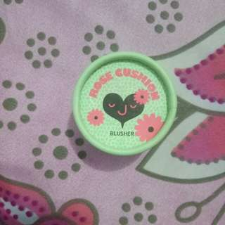 Cushion blush on  the face shop