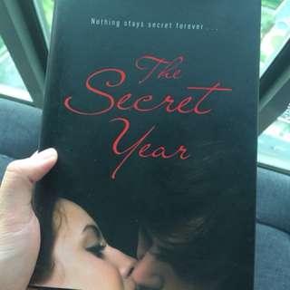 Book: The Secret Year