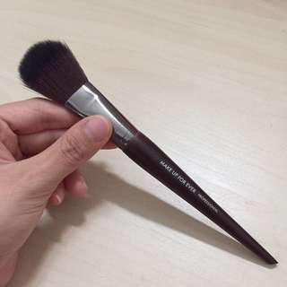 Makeup forever blush brush