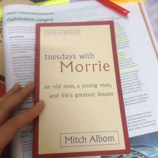 Tuesday with morries