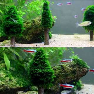 Aquarium DIY Moss Christmas Tree