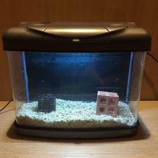 密封式水族箱 壓克力水族箱 壓克力寵物箱 水族箱