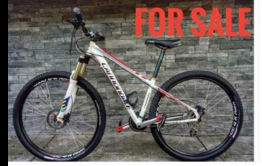 Cannodale trail six 29er