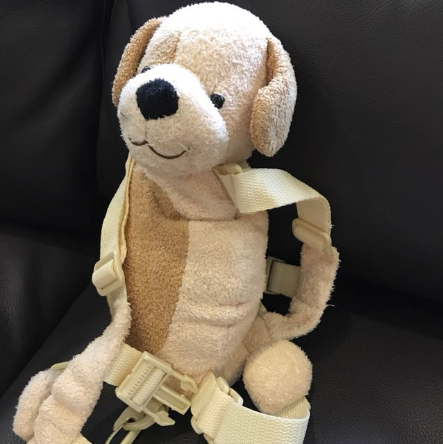Goldbug harness- dog on Carousell
