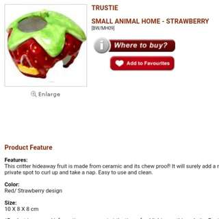 Trustie small animal home strawberry