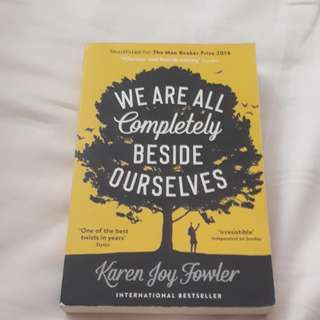 we are all completely beside ourselves paperback