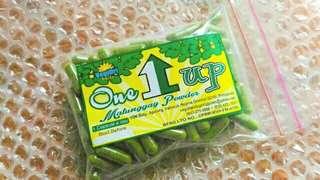 FDA Approved Organic Moringa/Malunggay Capsules