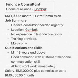 Finance consultant wanted