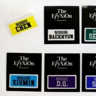 EXO ELYXION UNOFFICIAL MEMBER BADGE
