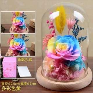 Valentine Flower - Preserved Fresh Rainbow Rose (Enjoy $10 off if order before 10 Jan)