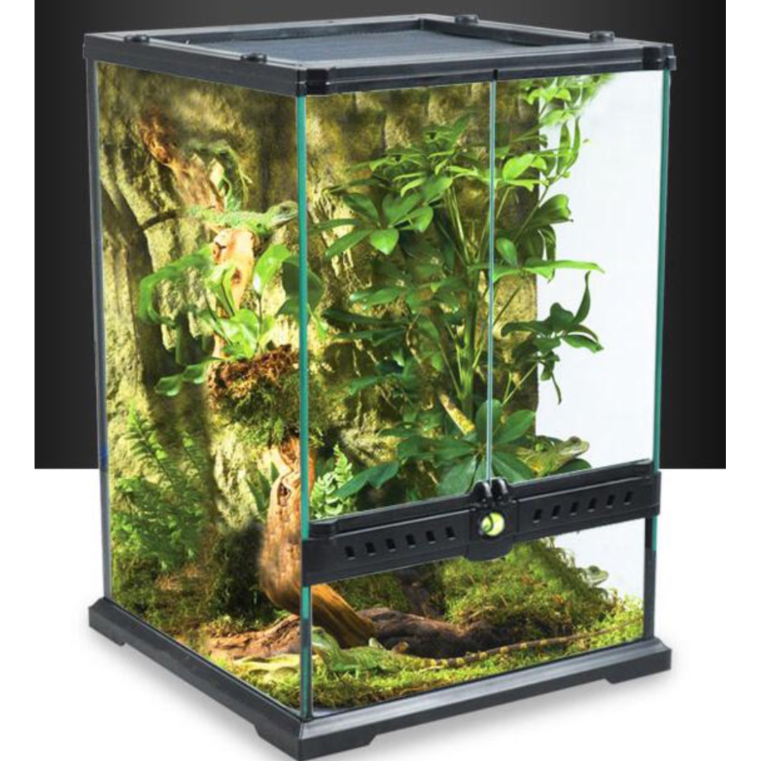 Terrarium Vivarium For Plants Exotic Pets Frog Moss Reptile