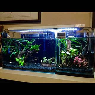 full aquarium set. Plug and play. fishes not included
