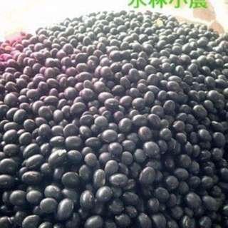 台南3號青仁黑豆,台灣雲林生產,國產大豆,非基改不噴落葉劑,人工收割日曬黑豆,小農自產自銷,黑豆茶,黑豆水,黑豆漿