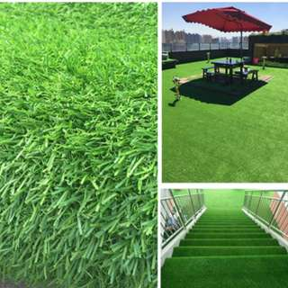 Carpet Grass/ Carpet Turf