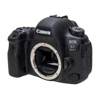 Canon EOS 6D MKII Rental