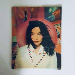 Björk Post Book