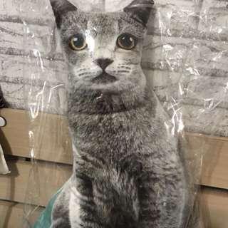 藍貓 抱枕 全新 只有一個