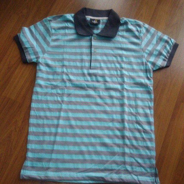 Gray and blue striped shirt