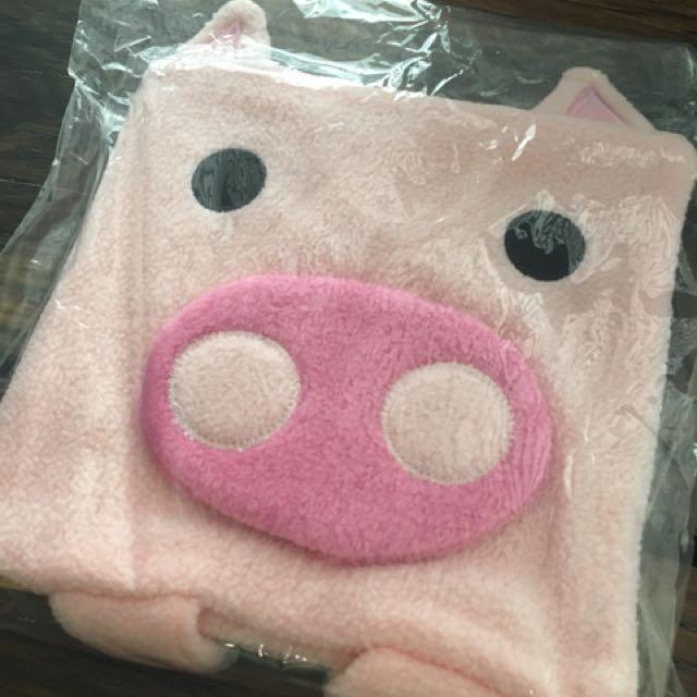 Pig Notebook