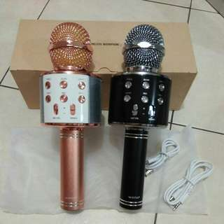 Wireless Karaoke Microphone