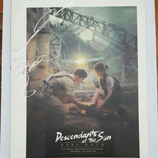 Descendants of the sun (DOTS) photo essay book [in malay]