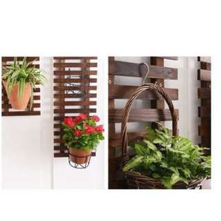 Hanging Plant Shelf/Holder