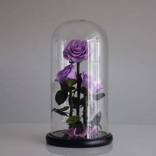 """Premium Preserved Roses - A Special Way to Say: """"I Love U"""""""