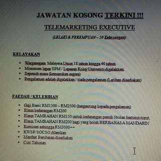 Telemarketing executive