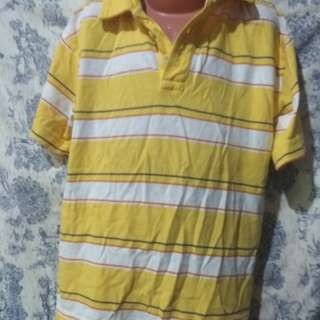 Imported arizona shirt