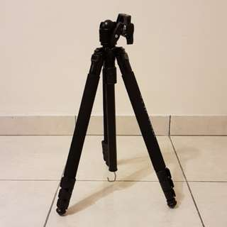 Ball Head Camera Tripod