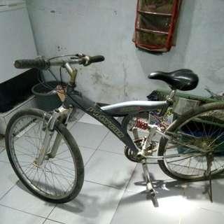 Sepeda sport POLYGON