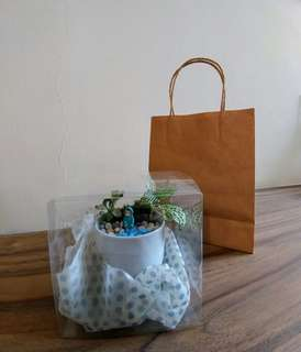 Paper bag and plastic clear box - package add-ons for terrarium