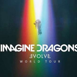 One tix Standing Area A - Imagine Dragons Evolve Tour