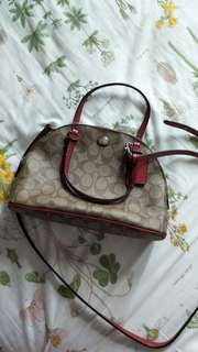 Coach -  bought from Lussonet website