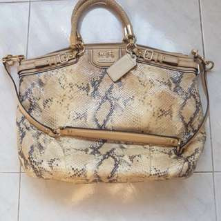 Coach Genuine Snake Leather Handbag