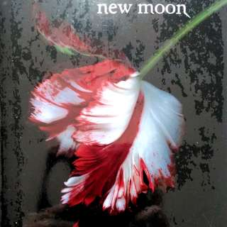 Twilight Saga: New Moon by Stephanie Meyer