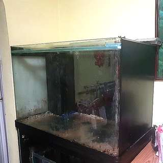 Fish Tank Aquarium 4 X 2 X 2 Ft