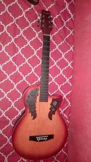 Acoustic Eletric Guitar