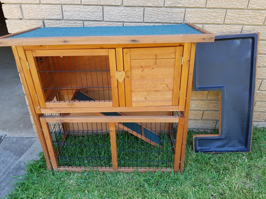 charles with pets storey two rabbit new covers pig product runs hutch area hutches bentley play guinea