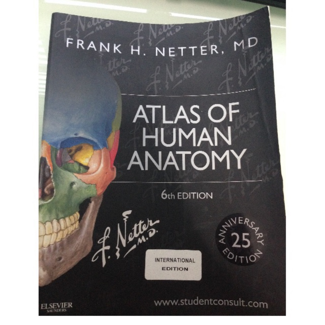 Netters Atlas Of Human Anatomy 6th Edition Books Stationery