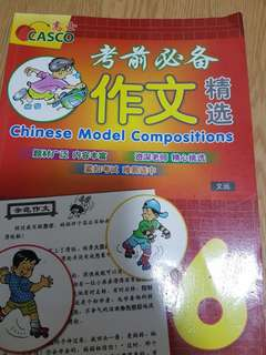 P6 Chinese model copositions Casco