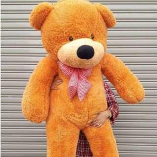 1.6 Meter ( 160cm ) Teddy Bear Besar Gedabak (9 pilihan warna!) READY STOCK