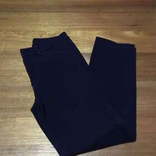 Uniqlo Ankle Pants (Blue)