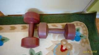 2 6 pound dumbbell Hand Weights