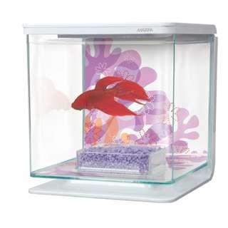 Marina Beta Kit 2L Aquarium tank