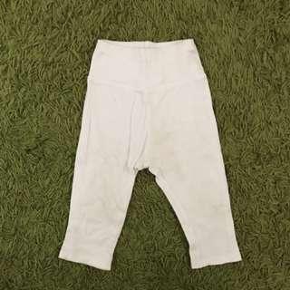 Pumpkin Patch pants