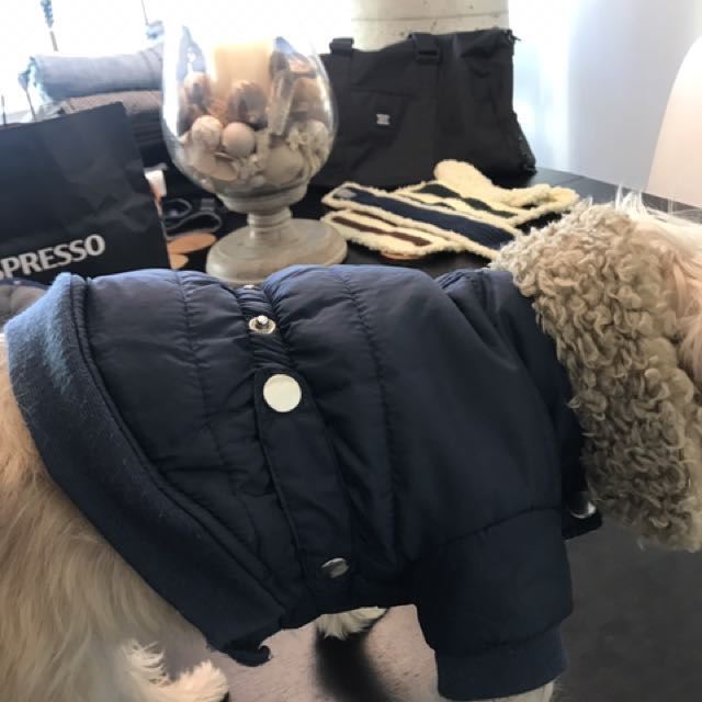 $10 each Xsmall dog jackets
