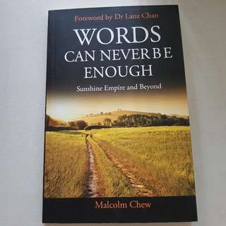Words Can Never Be Enough