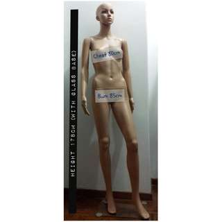 Full Body Mannequin